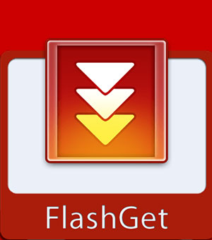FlashGet 2020 Portable